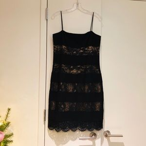 Laundry Black Lace Panel Dress Scallop Hem Sz 10